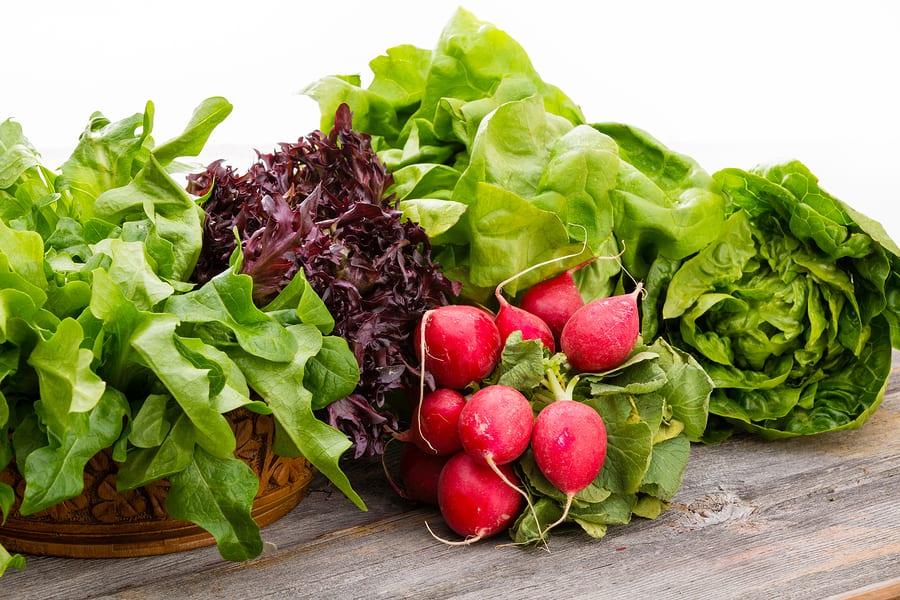 Elderly Care in Fairfax County VA: Diet Helps Health Issues